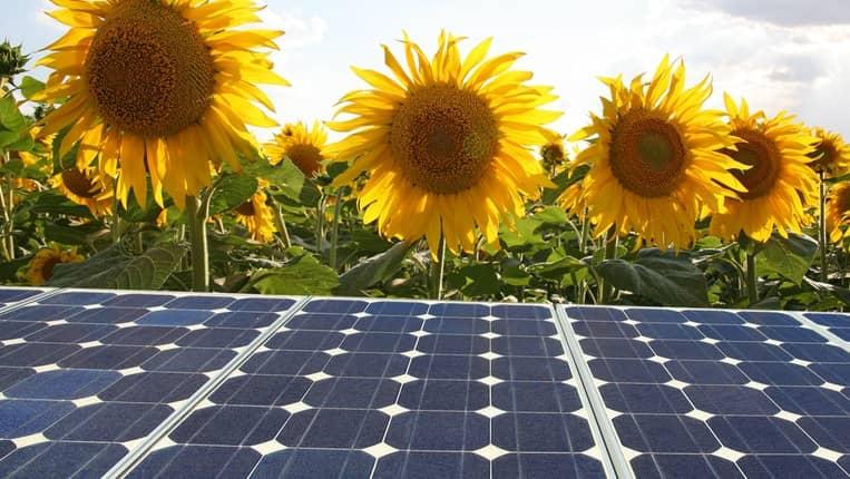 autoconsumo paneles solares fotovoltaicos