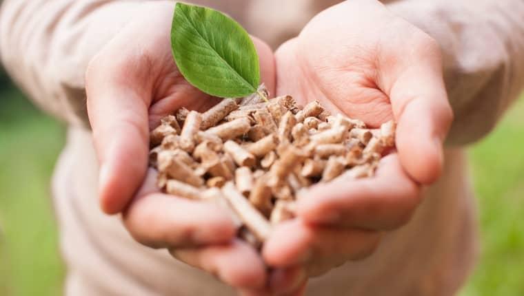 Estufas de pellet y biomasa energia renovable